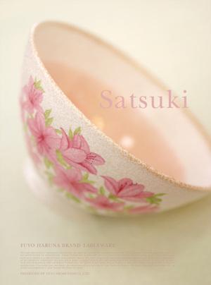Satsuki_tyawan_4