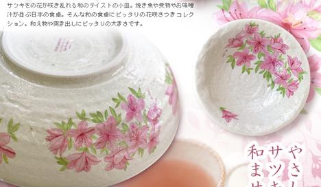2011image_hanasaki_bunru03